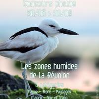 Concours Photo Zones Humides
